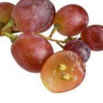 هسته انگور برای سلامت عروق